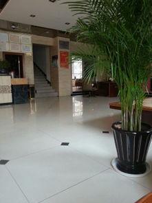 阿勒泰阳光酒店预订价格,联系电话 位置地址