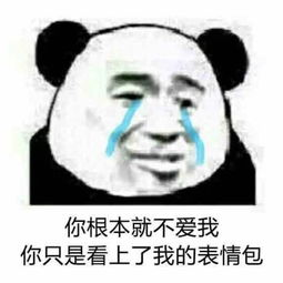 ...根本就不爱我,你只是看上了我的表情包 - 你根本就不爱我 _熊猫人_...