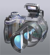 适马SD15数码相机使用说明书:[9]