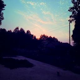 【海鸟】与【夕阳】