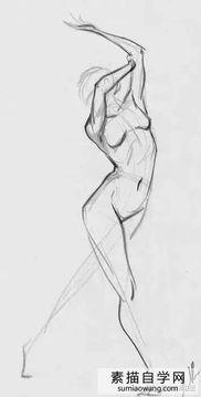 女孩身体外部构造图-男女人体动态结构比例图 学素描速写临摹图