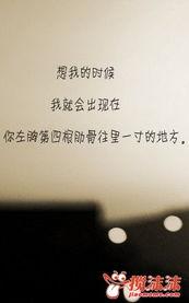 很美的句子和一些很美的故事 情感天空 西宁搅沫沫社区