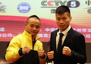 酒店四天在线观看-...日,在泸州巨洋大酒店举行了第四届CCTV贺岁杯拳击赛的新闻发...