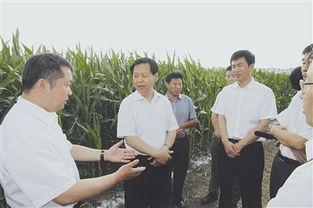7月17日鸡西 七台河 绥化等十地市领导动态