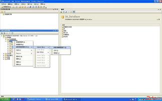 让你的SQL数据库区分大小写