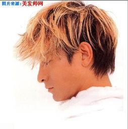刘德华图片最帅的发型