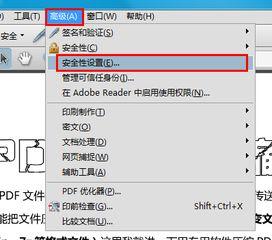 口令加密及证书加密PDF文件如何解除限制