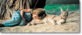 法国女孩蒂皮图集 人与动物