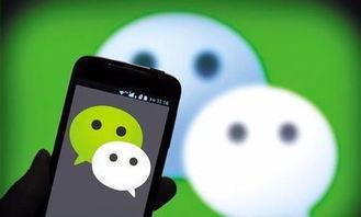 ...QQ群等社交平台上,网友发布的虚假信息屡见不鲜.-2017年 你不可...
