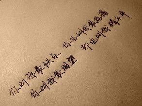 10句优美句子