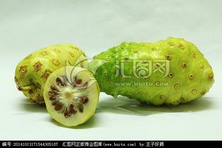 诺笙花-诺丽果,果实,植物花草,摄影,汇图网