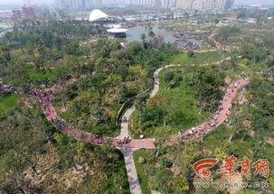 国庆假日航拍西安植物园新区游人如织