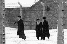 纳粹恶行滔天 梦魇60年