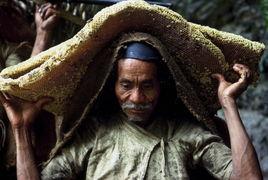 塞玉势珠子走路骑马bl-...尼泊尔采蜂者!行走在喜马拉雅峭壁上的部落(组图)-全球部落神奇...