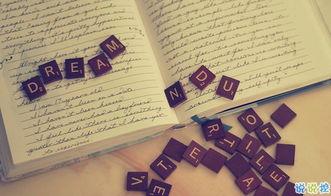 Word文档中怎样翻译文字、词语和句子