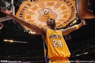 NBA科比布莱恩特图片