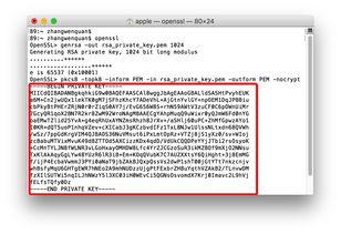 java中 RSA算法 如何进行公钥加密私钥解密