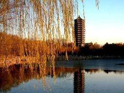 北京大学未名湖(图片来源于网络)-记录京城秋色 8款拍照强机伴你享...