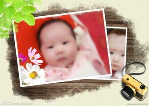 创意婴幼儿相册模板4图片