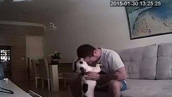 第二段视频中,他强迫另一只狗用后腿站立,并