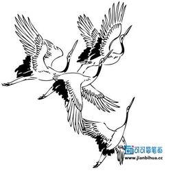 材,儿童简笔画仙鹤的画法,关于飞翔的仙鹤简单画法,儿童学画仙鹤...