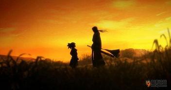 一个个英雄成长的故事,一篇篇催人泪下的尘世纠缠,说不完的泪痴...