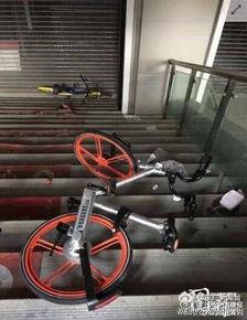 动态图尴尬自行车-[广告]活动入口:-成都共享单车遭遇尴尬被扔河里