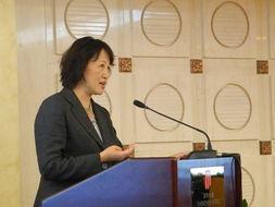 李若梅副主席介绍了CIGRE指导委员会及理事会会议情况-CIGRE中国...