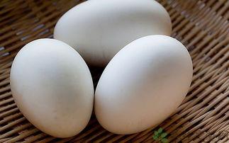 鹅蛋的营养价值 吃鹅蛋的好处 食材