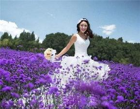 北京婚纱摄影多少钱、上海婚纱摄影多少钱、外景婚纱照多少钱等等...