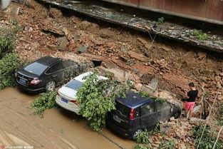 郑州雨后树倒墙塌 5辆私家车被砸面目全非(组图)-房屋被砸相关新闻...