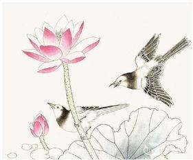 工笔画入门脊苓鸟的画法