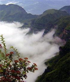 镇天珑-打开计算机,查看有关贵州尧龙山旅游的相关资料,网站发帖很多....