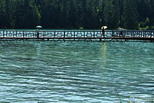 ...图21:这是用长镜头拍摄的游船码头栈桥的一幅图片,-人间幻境喀纳...