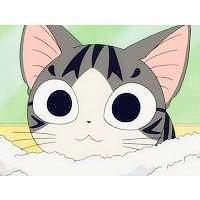 qq头像动漫猫头像 猫和老鼠qq头像