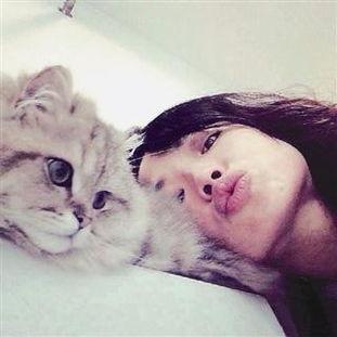 肥猫代表我的心