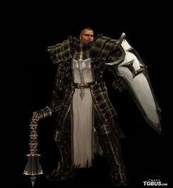 女尊男卑之夫君威武-圣教军男性-暗黑3夺魂之镰新职业 圣骑士演示视频欣赏