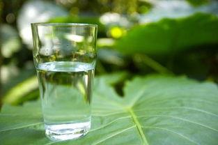 一、冰水   早上喝冰水固然凉爽,尤其在夏天,但很不科学.喝冰水容...