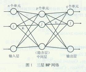 基于BP神经网络的转炉静态模型