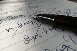 如何高效写作