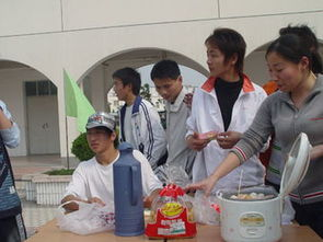 化节 中等专业学校 校园