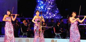 上海轻音乐团现场助阵表演提琴重奏