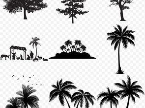 树木大树黑白剪影彩色手绘大树木植物png