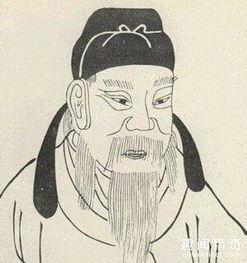 宋王朝的叛逆.回到宋朝后,他窃取了右宰相的高位,