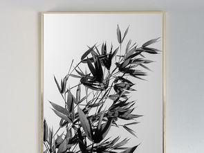 黑白竹子竹叶静物装饰画