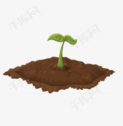 卡通泥土中的嫩芽素材图片免费下载 高清png 千库网 图片编号7982193