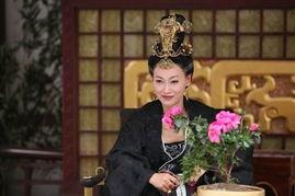 琴高娃《武则天秘史》,李湘、刘雨欣《太平公主秘史》,王力可《梦...