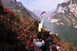 彩带飞舞红叶间.图为游客在山巅看红叶.   摄 -打印 巫山红叶红遍山...