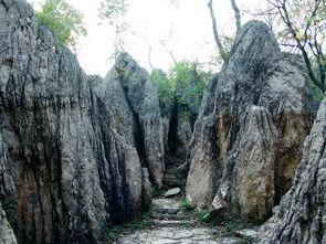 区、寿县县城呈三角形关系,三角形的中央就是八公山.