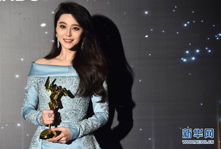 亚洲电影大奖颁奖 范冰冰拿亚洲影后 我不是潘金莲 获最佳电影奖